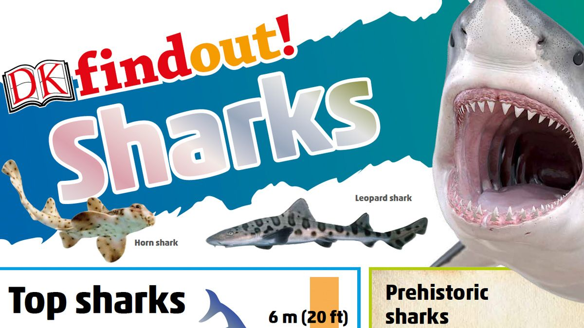 Free Learning Resources On Pirates And Sharks Activity Sheets For Kids Learning Resources Free Learning