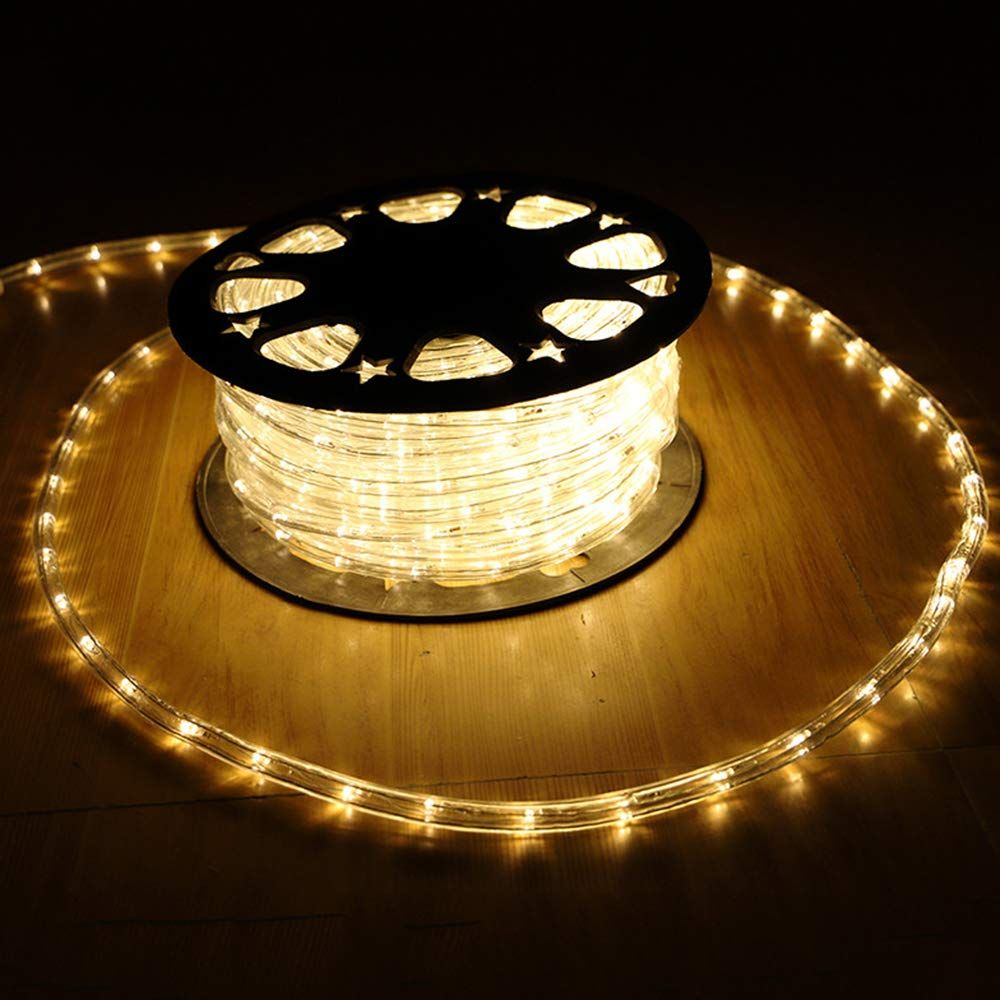 Danli Flexible 100ft 30m 2 Wire Waterproof Led Rope Light Kit Good For Garden Christmas Lighting Led Rope Lights Diy Outdoor Lighting Outdoor Lighting Design