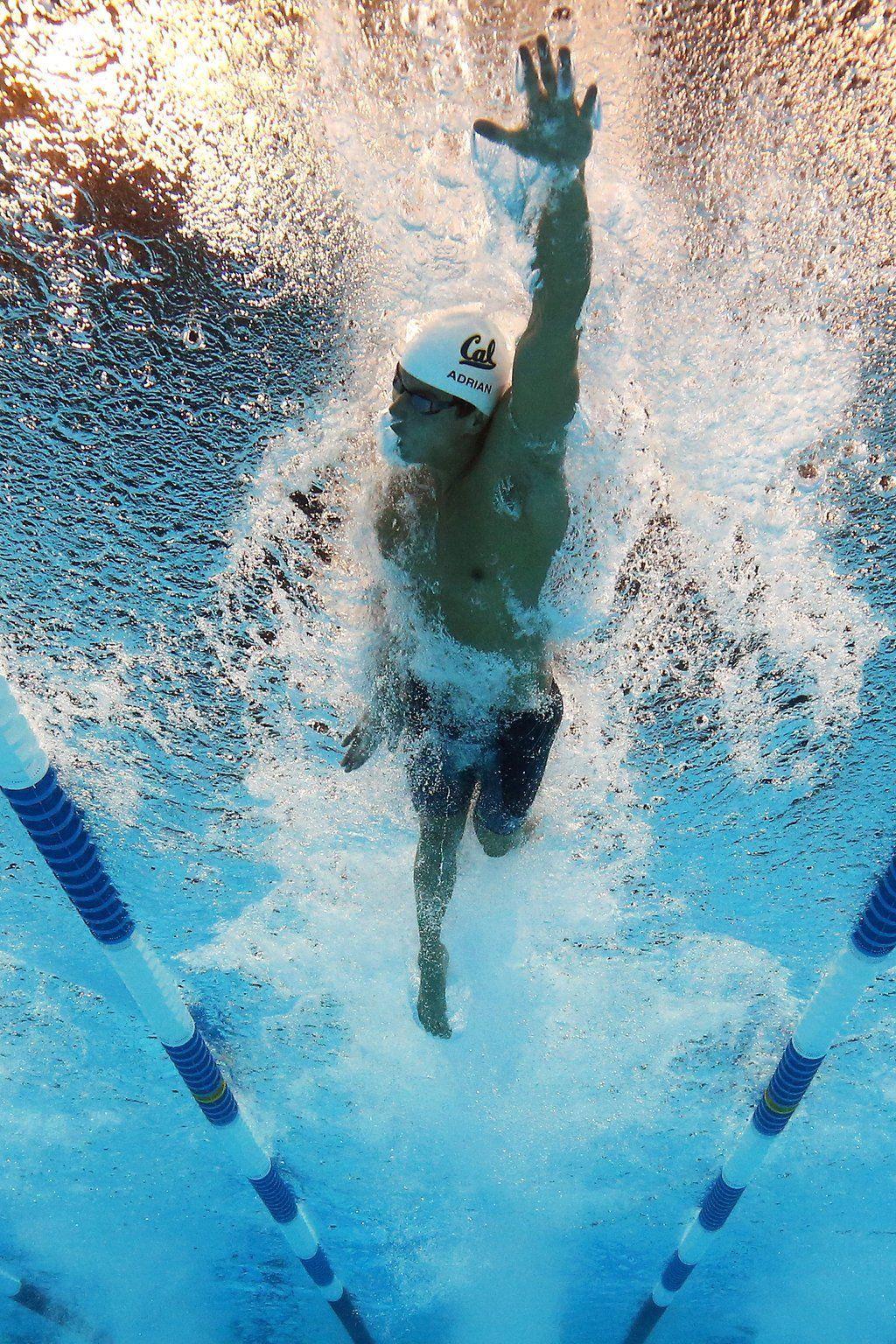 b732c239c76f Pin de машенька магонова en Спортлайф | Amo nadar, Natación y Triatlón