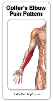 17 Best images about Tennis Elbow and Golfers Elbow on Pinterest ...