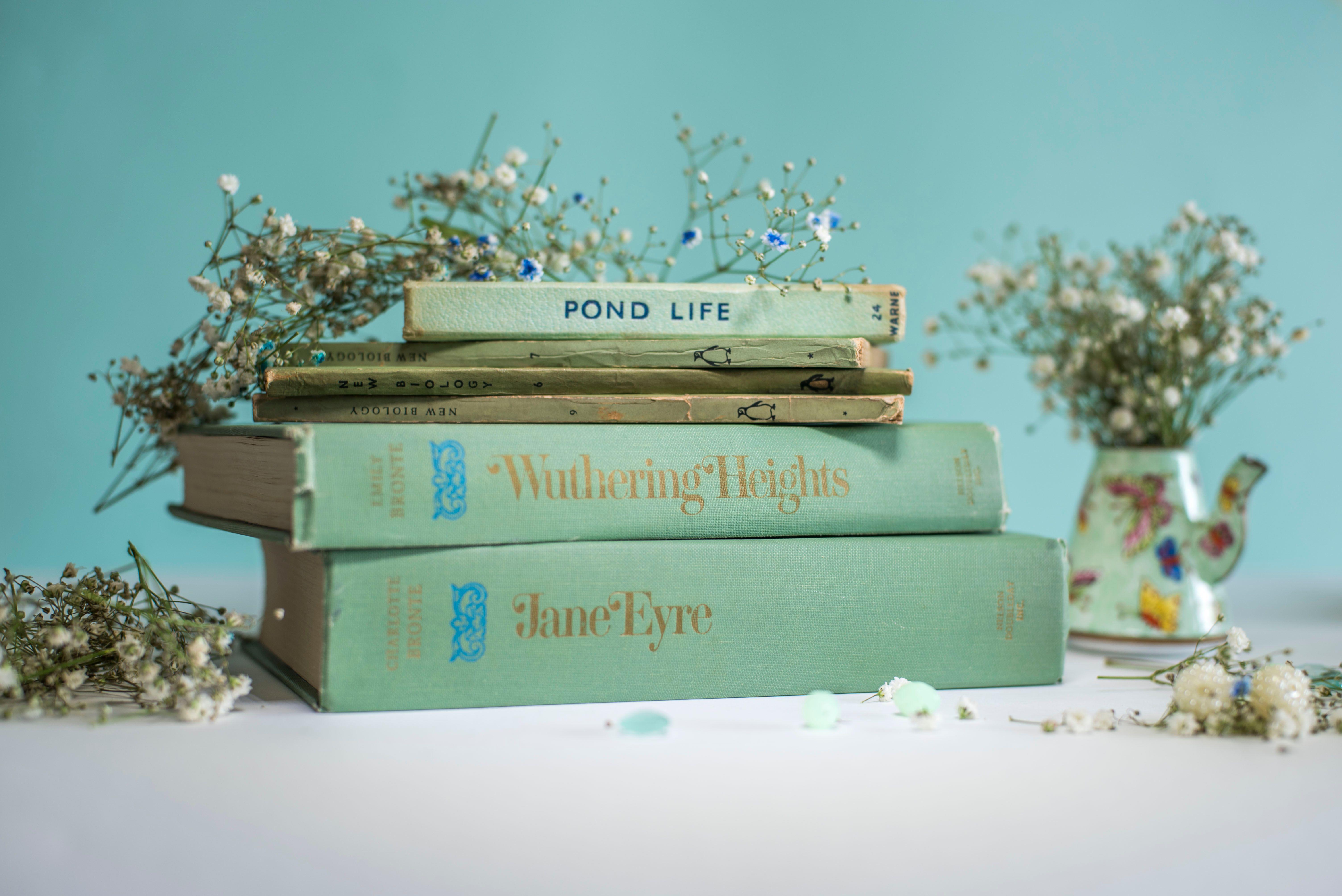 Find Us On Facebook Bluebell Abbey Instagram Bluebellabbeybooks Books
