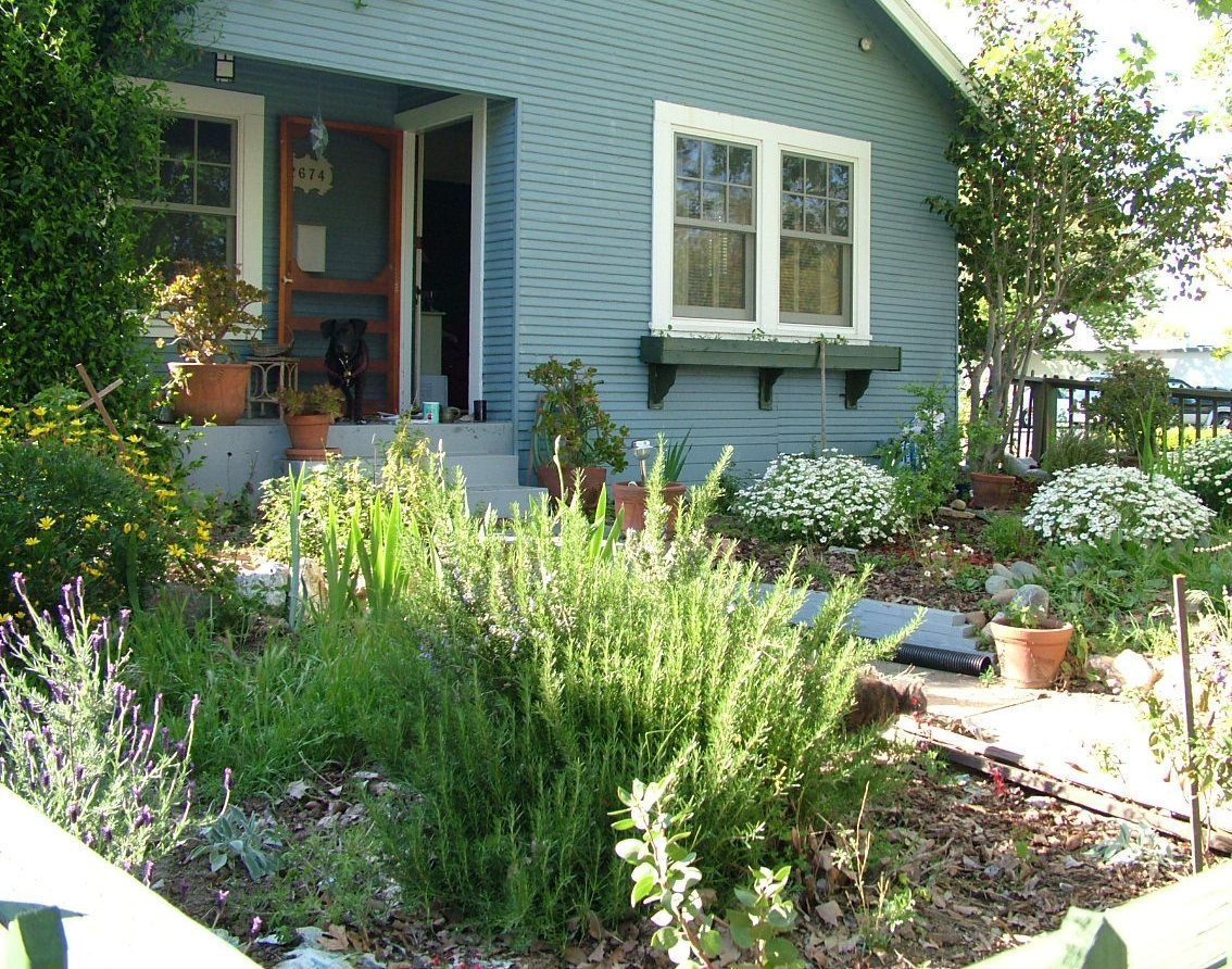 Landscape Ideas Front Yard Minnesota
