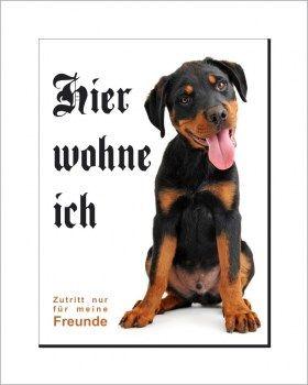 Rottweiler Schild - HIER WOHNE ICH!   Rottweiler, Lustige ...