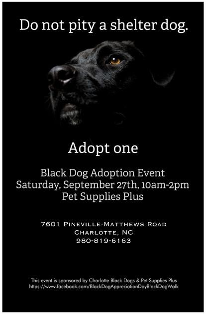 Come See Us At The Black Dog Adoption Event This Saturday Sept
