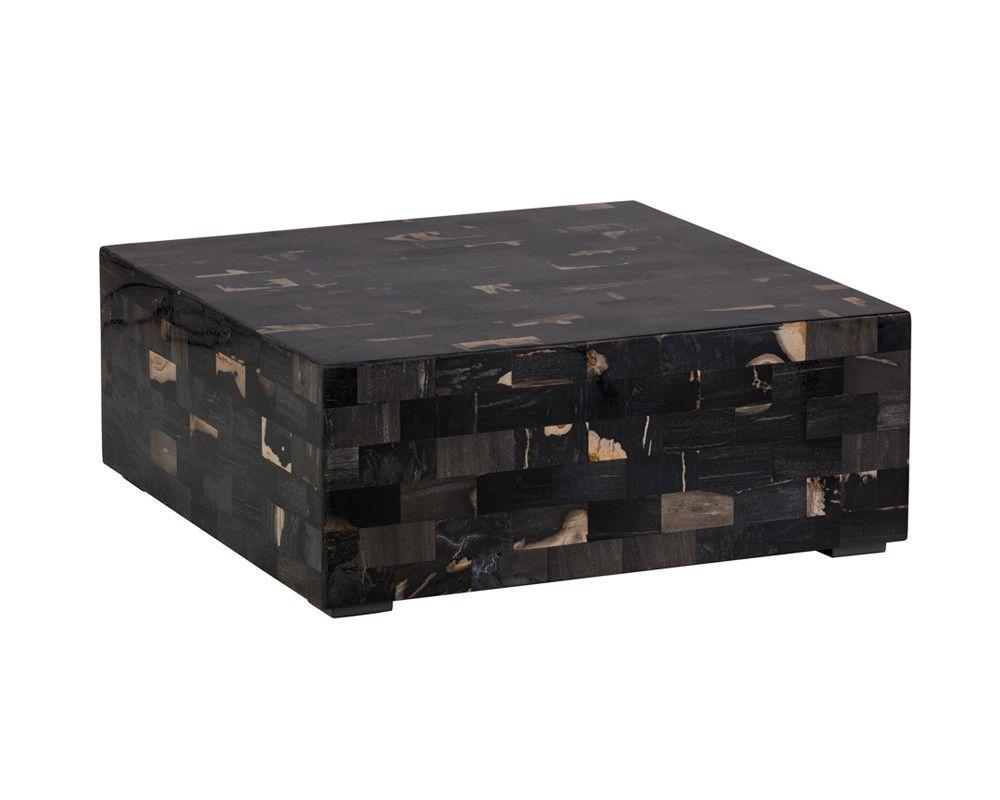 Midnight coffee table petrified wood coffee tables