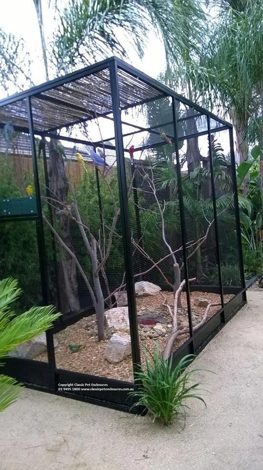 Custom Built Aviary In The Setting Simply Stunning Aviariesdiy Large Bird Cages Bird Aviary Pet Bird Cage