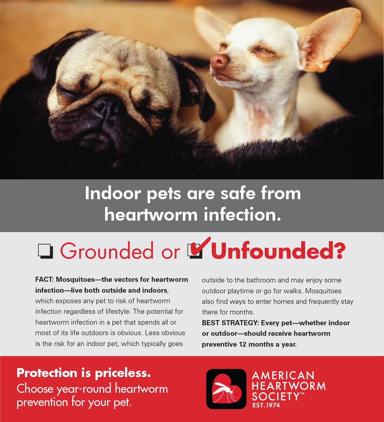 Heartworm prevention is important for all pets, not just