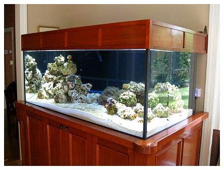 Custom Fish Tank Stand Aquarium Stand Diy Aquarium Stand Fish Tank Stand