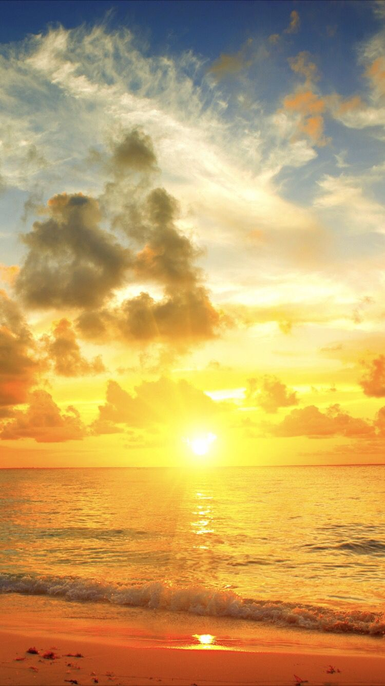 Sunshine Wallpaper For Your Iphone 5 From Everpix In 2019