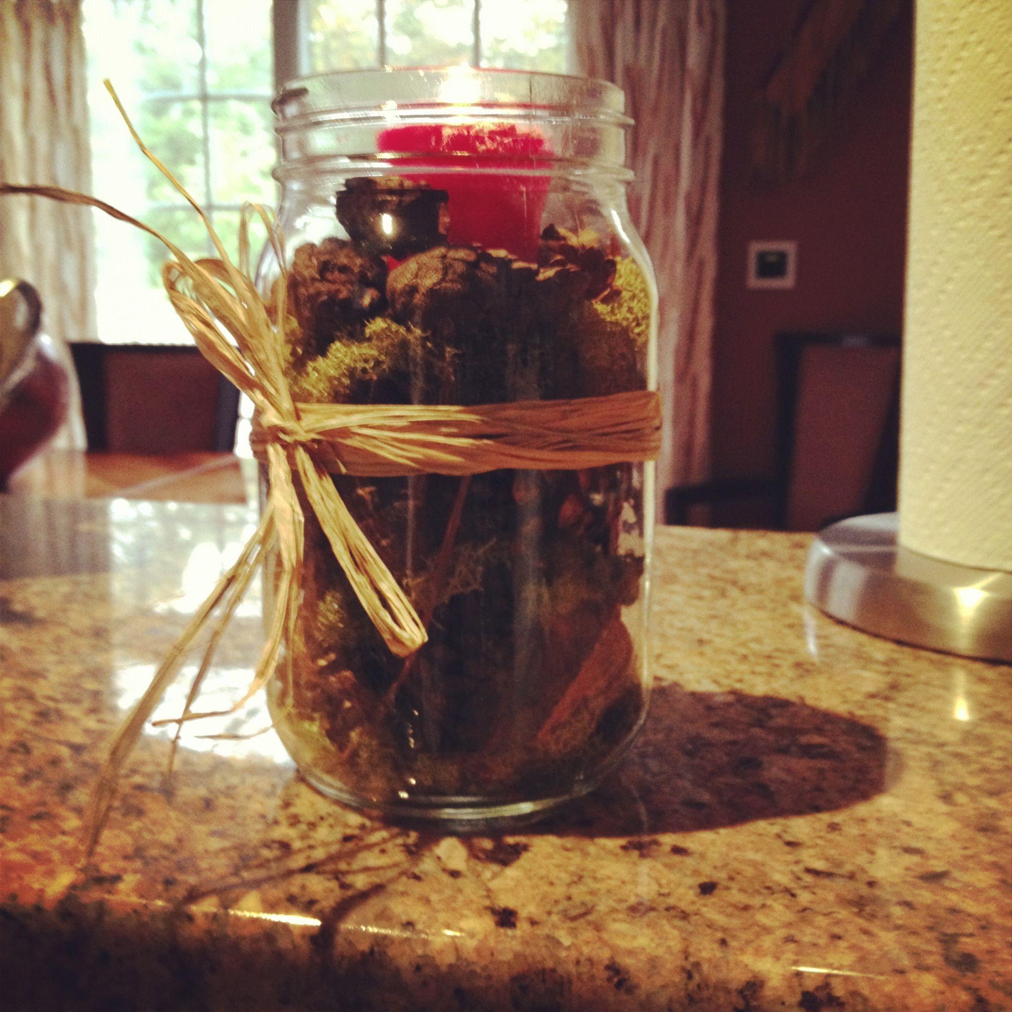 Fall mason jar DIY candle. (Moss,scented pinecones, cloves, cinnamon sticks