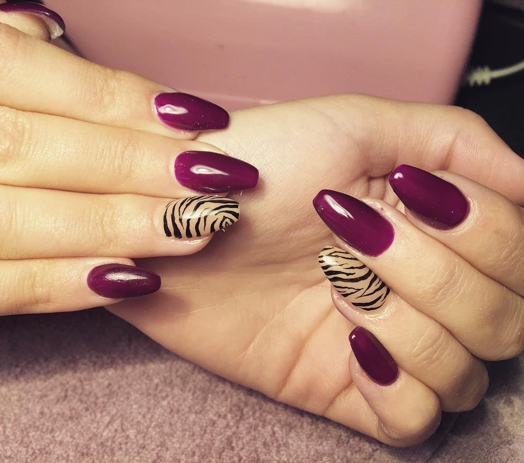 Candy Zebra Nail Design Nails Pinterest Zebra Nail Designs