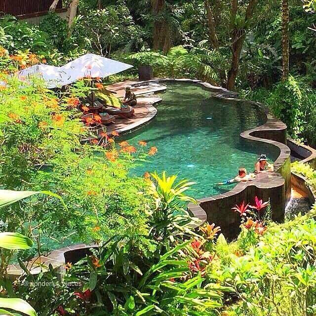 Pin by 형분 박 on gardening Ubud resort, Ubud, Wonderful places