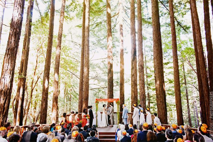 Gorgeous Trees Are The Perfect Ceremony Backdrop For This Santa Cruz Wedding
