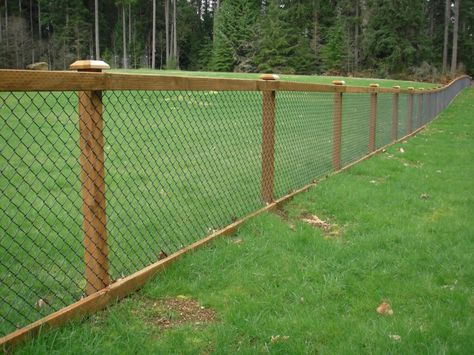 Good Fencing Option Along Wooded Property Line Hog Wire Fence Backyard Fences Fence Options