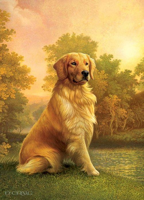 Golden Retriever By Dan Craig Dogs Golden Retriever Painting