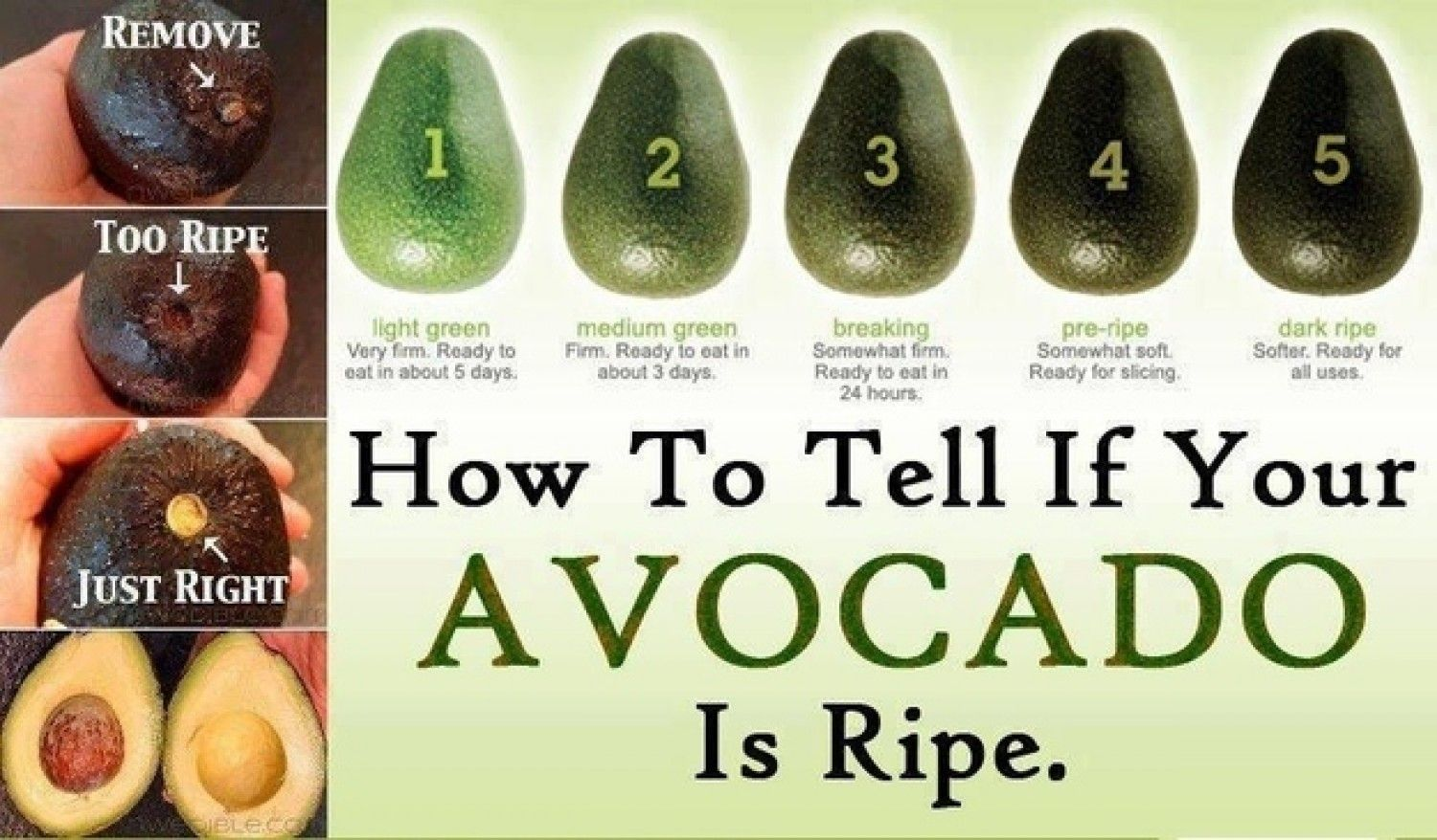 How to determine the ripeness of avocados in the store 60