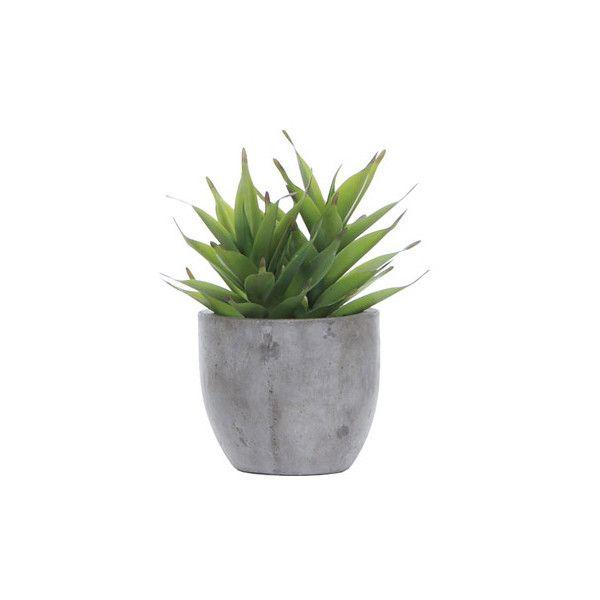 Lux Art Silks Succulent Grey Pot Silk Arrangement (1 195 SEK) ❤ liked on Polyvore featuring home, home decor, floral decor, plants, fillers, flowers, decor, green, embellishment i detail
