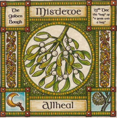 Mistletoe Tree Greeting Card 23rd Dec Celtic Pagan Birthday Ogham
