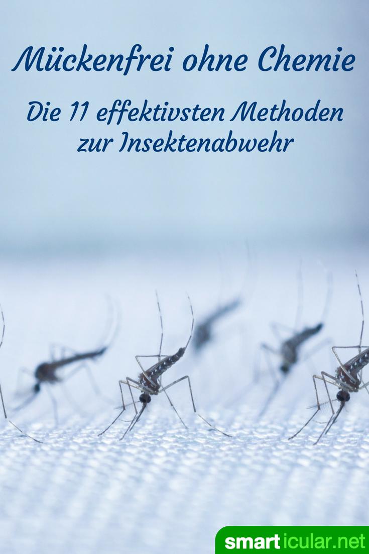 m ckenfrei ohne chemie die 11 effektivsten methoden zur insektenabwehr m cken hausmittel