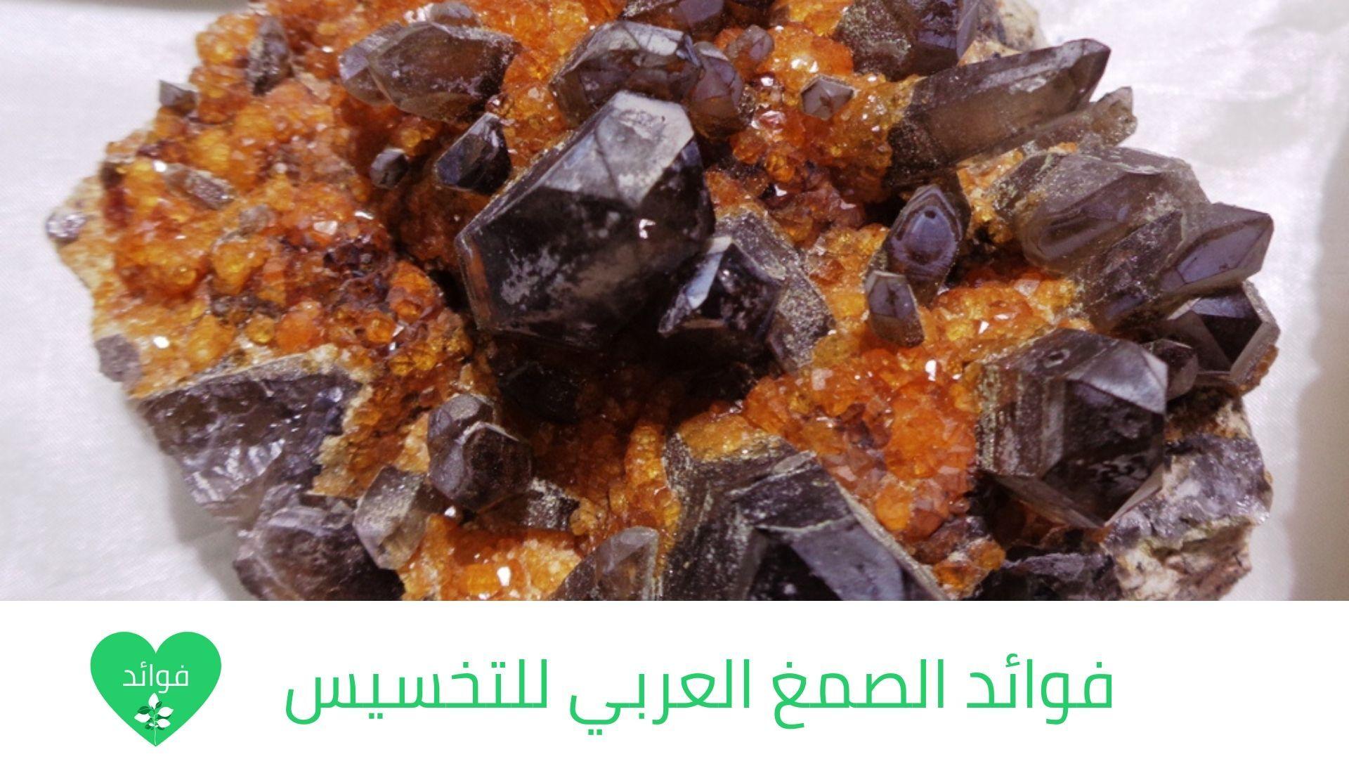 فوائد الصمغ العربي للتخسيس أفضل حارق للدهون في العصر الحديث Food Desserts Breakfast