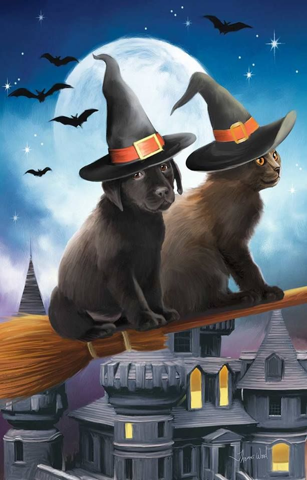 Quot Have Broom Will Travel Quot Thomas Wood Halloween