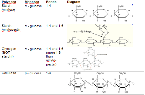 Starch Vs Cellulose Vs Glycogen Carbohydrates Biology What Are Carbs Carbohydrates