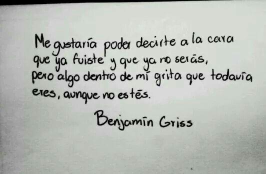 Benjamín Griss