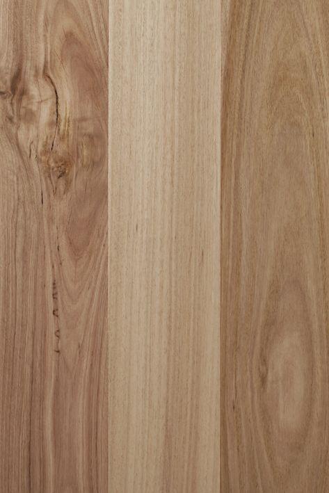 Spotted Gum - Melbourne Floor Direct | House Flip Ideas ...