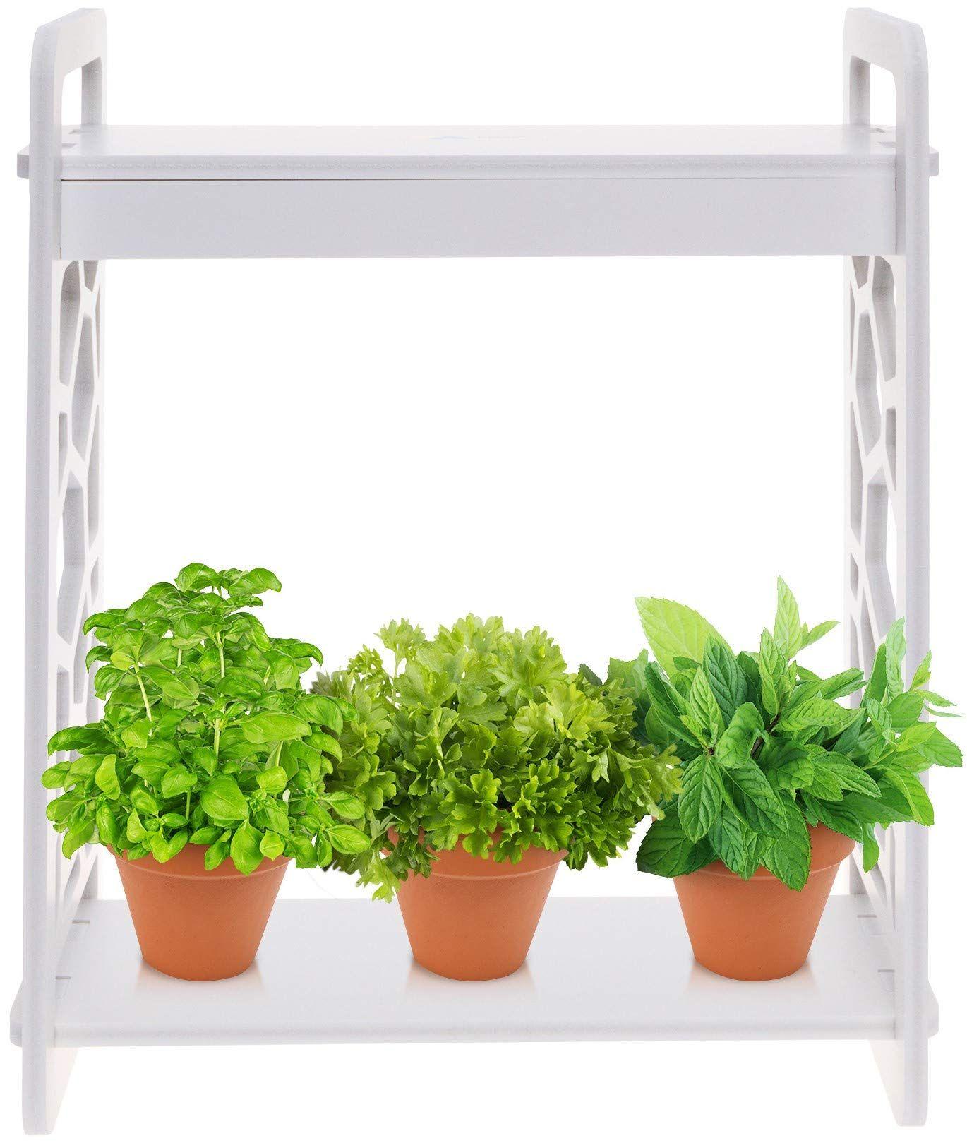 Mindful Design LED Indoor Herb Garden with Timer at Home