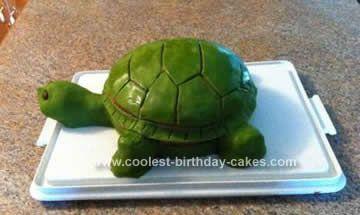 Cool Homemade Turtle Birthday Cake Homemade turtles Turtle