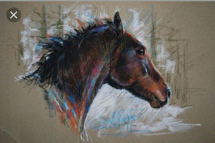 Horse with pastel( άλογο ζωγραφισμένο με pastel)
