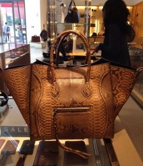 0ef81eaebce The Ultimate in Super Luxury  the Celine Python Phantom Bag   Celine ...