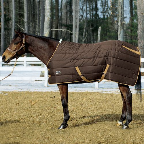 Rider's International Medium Weight Stable Blanket | Dover Saddlery