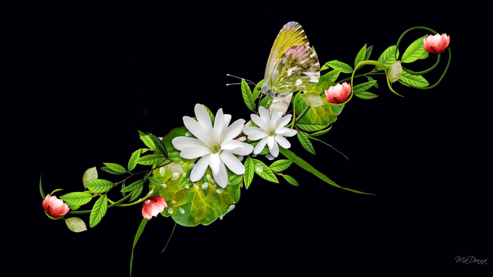 3d flowers wallpapers | hd wallpapers 4 all | face painting