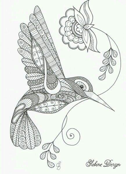 pin von ruth zumbach auf zeichnen mit bildern  vogel