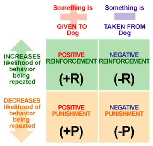 Operant Conditioning Worksheet Operant Conditioning Ap