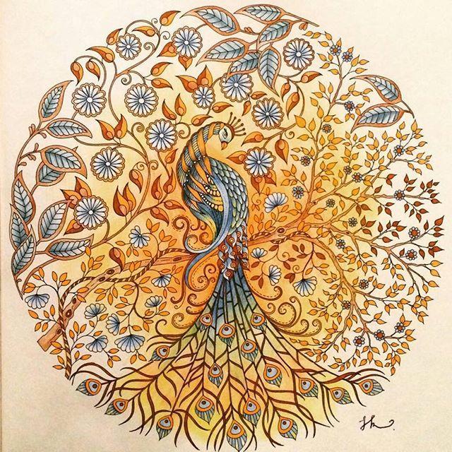 So beautiful! @Regrann from @jessica_rainbow -  #컬러링북 #비밀의정원 #파인라이너 #펜 #색연필 #steadtler #fineliner #artecomoterapia #파버카스텔  #컬러링북 #비밀의정원 #secretgarden #jardimsecreto  #secretgardencoloringbook  #coloringbook #johannabasford  #florestaencantada  #colors #colouringbook  #secretgardencoloringbook #Regrann