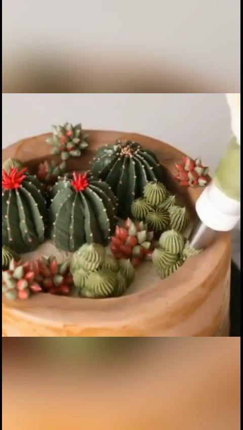 Elegant cactus cake