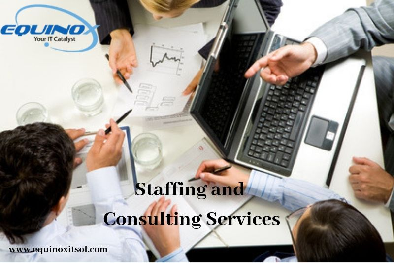 Equinox IT Solutions LLC provides effective consulting and