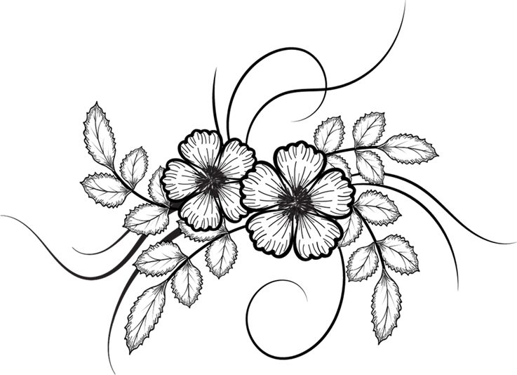 Pin By Ammara Shafqat On Drawings In 2020 Flower Drawing Simple Flower Drawing Flower Sketches