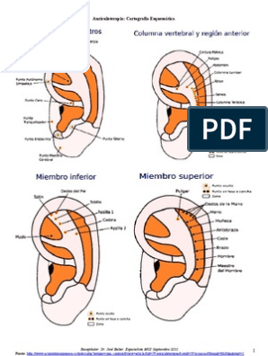 auriculoterapia para rebajar pdf free