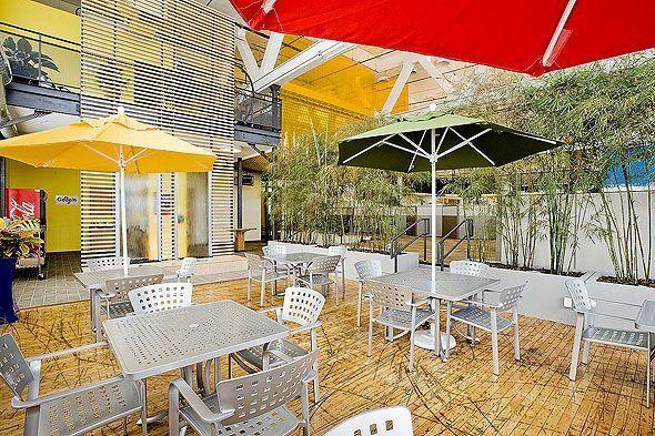 google office in pittsburgh. Google Pittsburgh Office Indoor Bamboo Garden In
