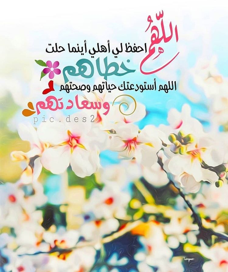 Pin By Whisper A R On آيات قرآنية Holy Quran Its Friday Quotes Cool Words