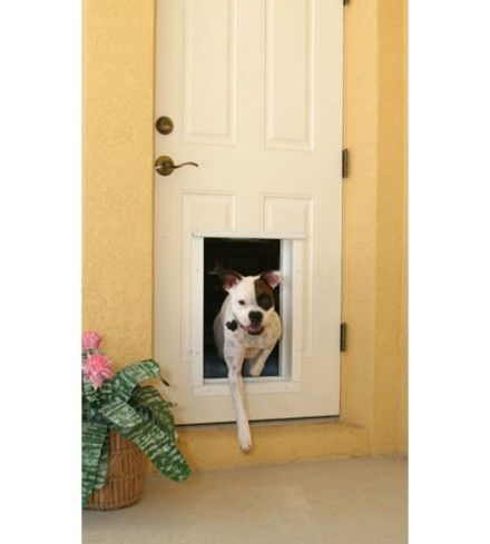 Electronic Doggy Door Puts A Key On Your Pet Dog Door Automatic