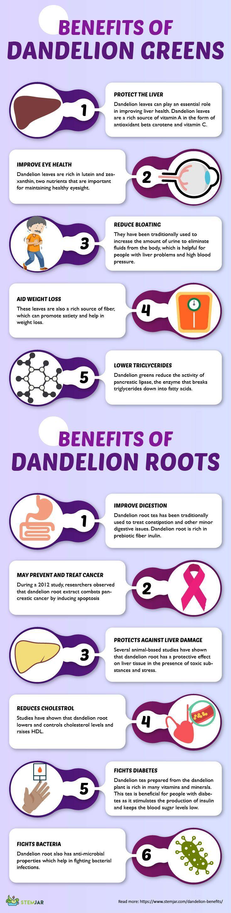 Dandelion - A Pesky Weed or Excellent Food and Medicine? #eggnutritionfacts