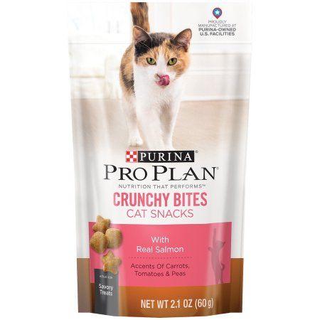 Pets Cat Treats Corn Gluten Meal Dry Cat Food