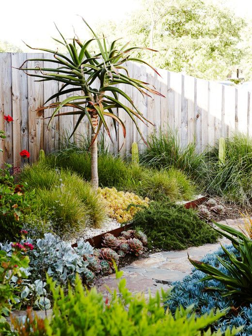 Sam Clayton and Mal Wood | Design files, Gardens and Front yards
