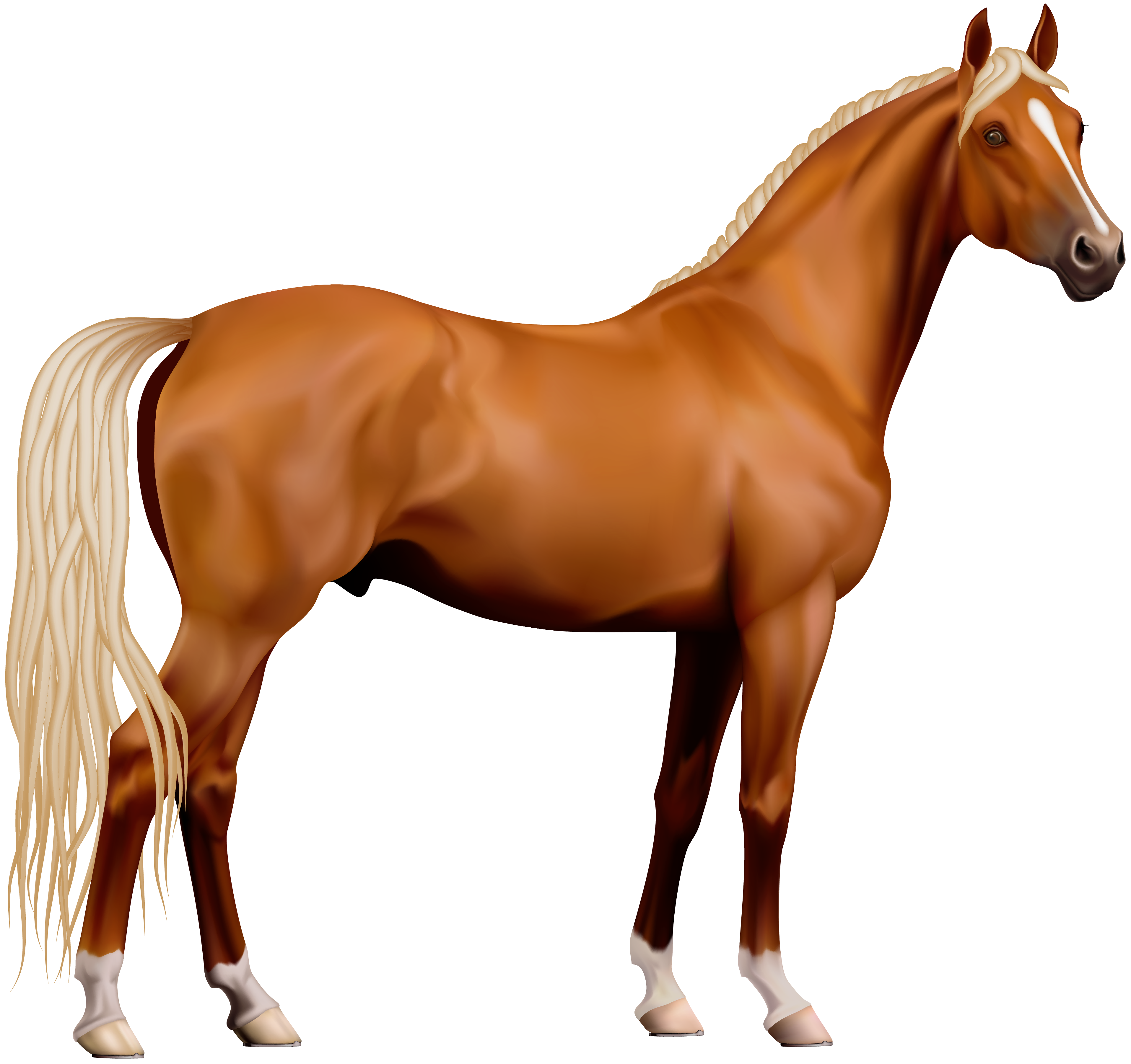horse lovers clip art - photo #20