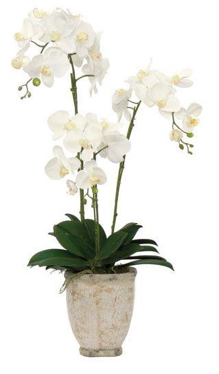 White Orchid Faux Flower Arrangement