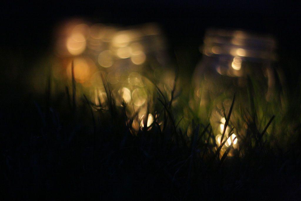Fireflies in a jar wallpaper google search fireflies for Firefly lights urban